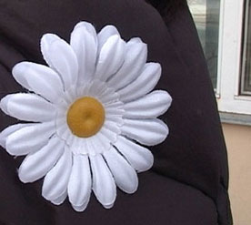 Intersting facts about Denmark - White Flowers