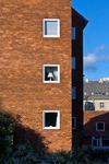 Danish Houses